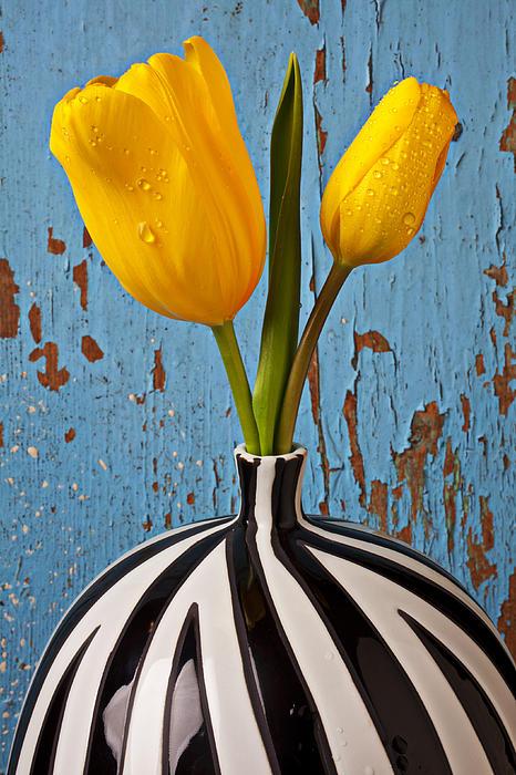 Garry Gay - Two Yellow Tulips