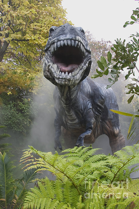 Tyrannosaurus Print by David Davis and Photo Researchers