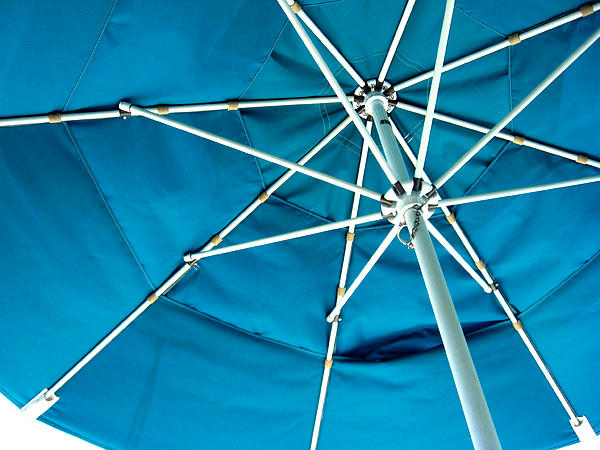 Umbrella Print by Marsha Elliott
