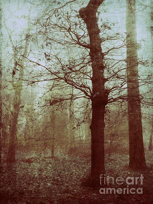 Anne Staub - Un hiver