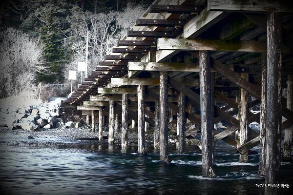 Dorothy Hilde - Under the Bridge - Esquimalt Lagoon