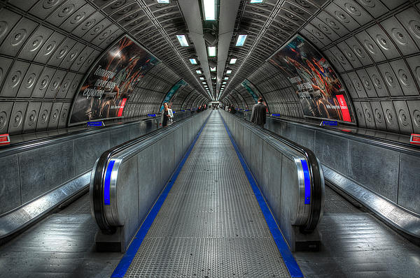Underground Life 01 Print by Svetlana Sewell