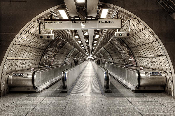 Underground Life 02 Print by Svetlana Sewell