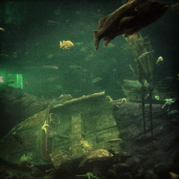 Underwater Ship Tattoo Sunken Ships Underwater