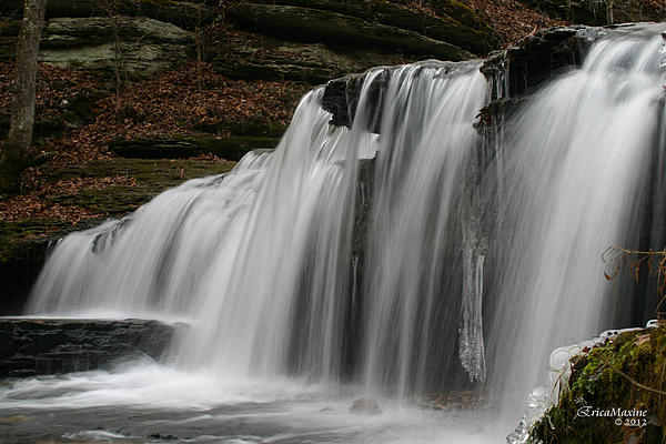 EricaMaxine  Price - Union Camp Falls - 2nd Place Contest Winner