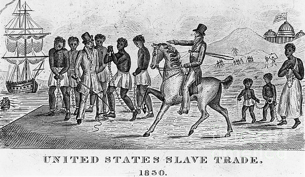 United States Slave Trade Print by Photo Researchers