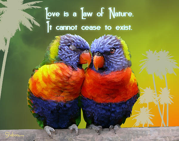 Universal Law Print by Shaboo Prints