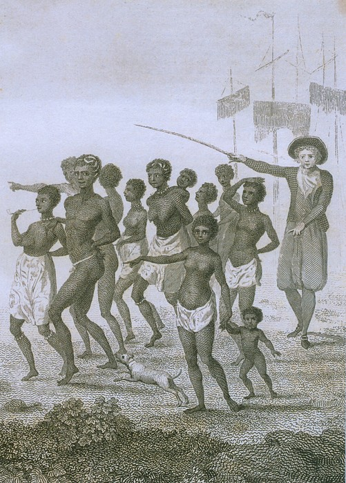 Unloading Of Enslaved Africans In Dutch Print by Everett