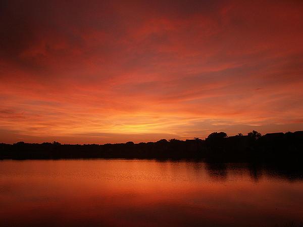 Bill Lucas - Untitled Sunset-28