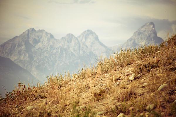 Uphill Climb Print by Betsy Barron