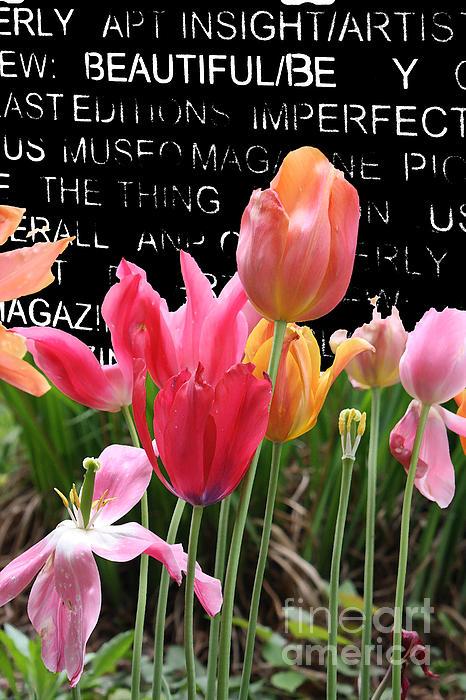 Urban Tulips Print by Anahi DeCanio