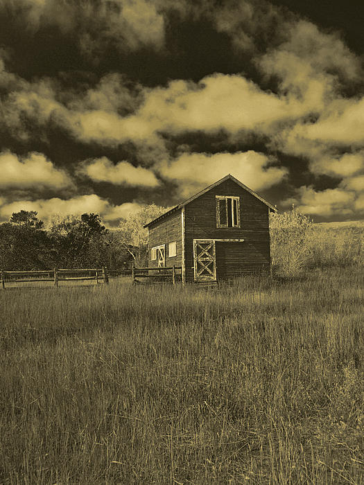 Utah Barn In Orotone Print by Joshua House