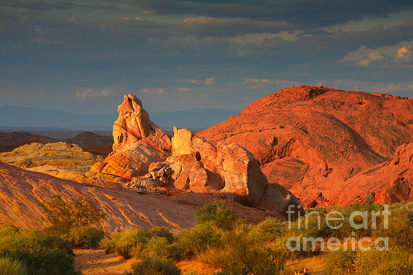 Valley Of Fire - Picturesque Desert Print by Christine Till