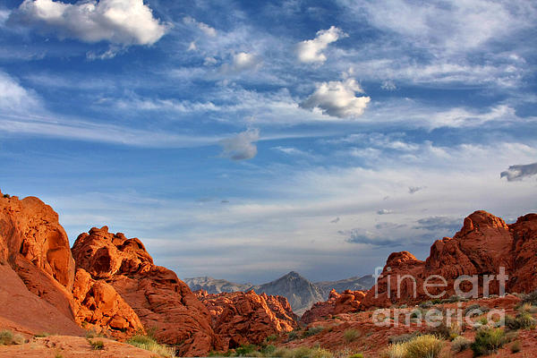 Valley Of Fire Nevada - A Must-see For Desert Lovers Print by Christine Till