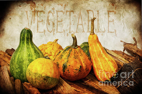 Vegetable II Print by Angela Doelling AD DESIGN Photo and PhotoArt