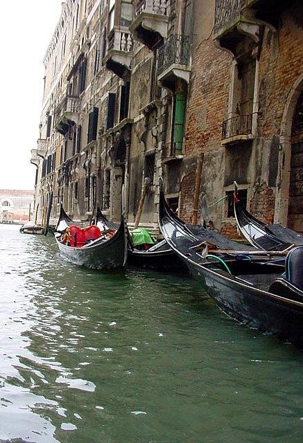 Kay Gilley - Venice