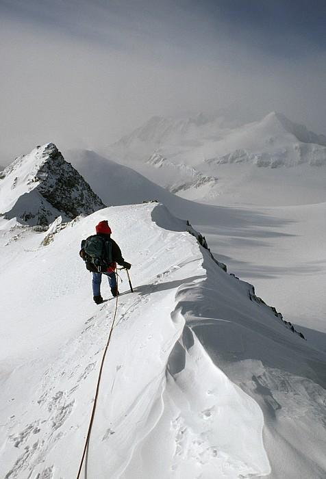 Viewing Mt.shinn From The Vinson Print by Gordon Wiltsie