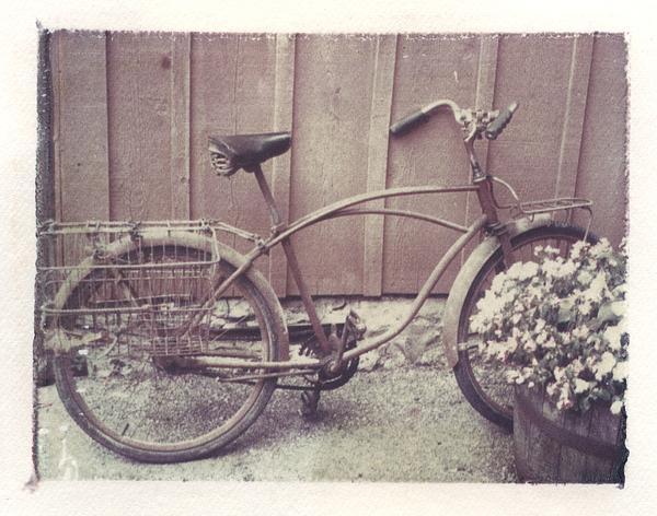 Vintage Bicycle Print by Jane Linders