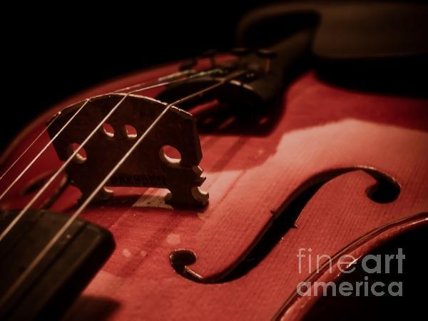 Valerie Morrison - Vintage Violin