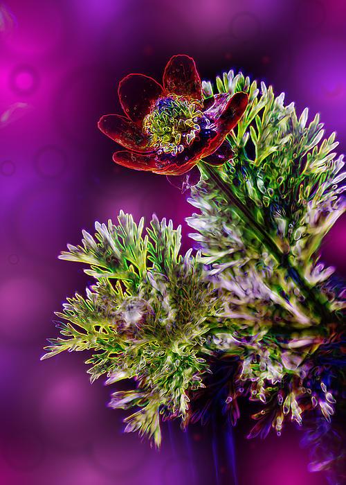 Violet Labialize Flora Print by Bill Tiepelman