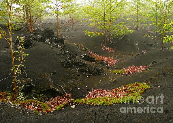 Volcanic Scenery Print by Bernard MICHEL