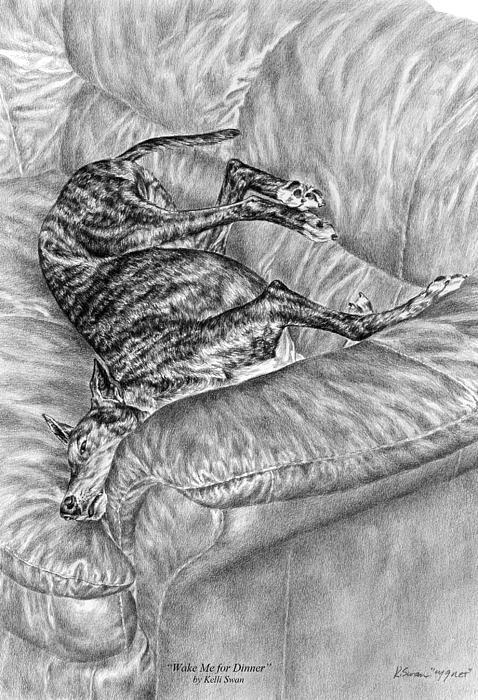 Wake Me For Dinner - Greyhound Dog Art Print Print by Kelli Swan