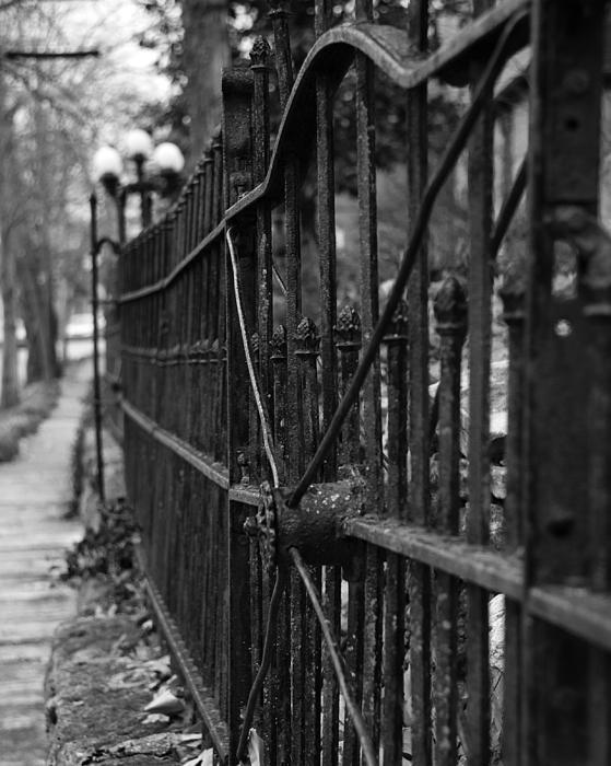 Walk Of Iron Print by David Waldo