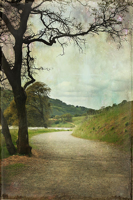 Walk Of Life Print by Laurie Search