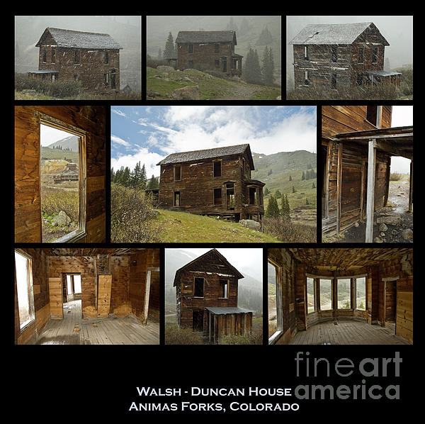 Tim Duncan House Bing Images