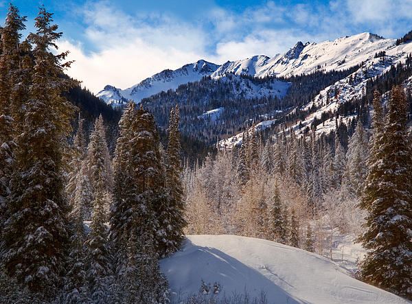 Wasatch Mountains In Winter Print by Utah Images