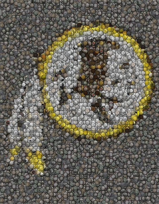 Washington Redskins Coins Mosaic Print by Paul Van Scott