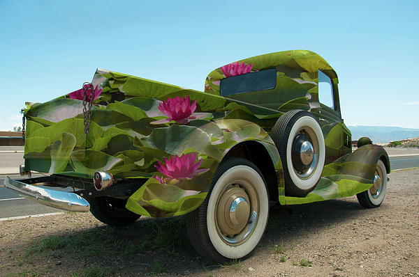 Water Lily Truck Print by Carolyn Dalessandro