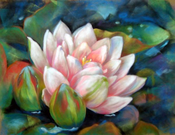 Usha P - Water Lily