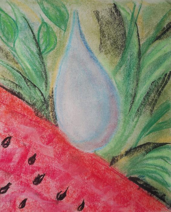 Water Watermelon Print by Aldonia Bailey