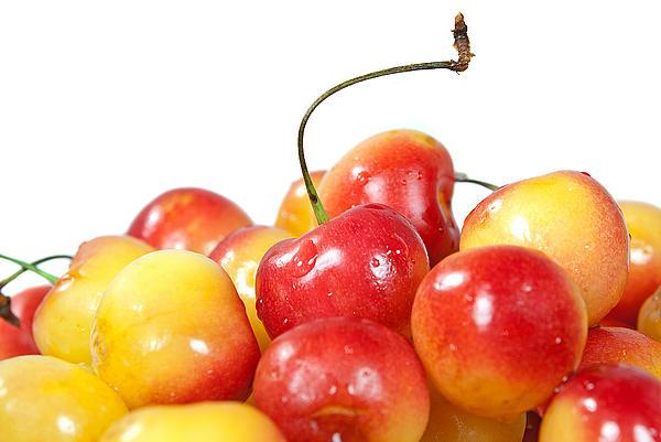 Maria Dryfhout - Wet Cherries