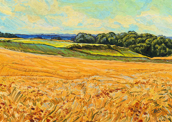 Wheat Field In Limburg Print by Nop Briex