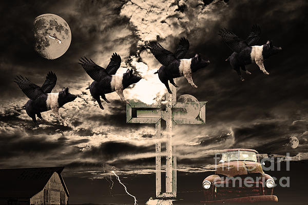 Wingsdomain Art and Photography - When Pigs Fly