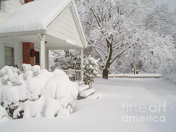 White Blanket Print by Donna Cavender