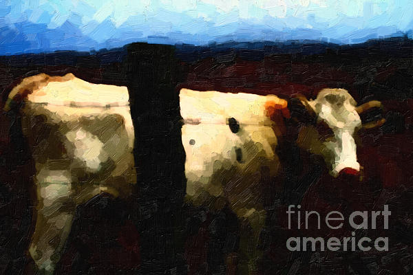 White Cow Behind Fence At Night Print by Wingsdomain Art and Photography