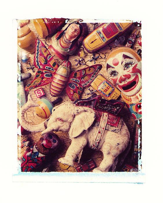 White Elephant Print by Garry Gay