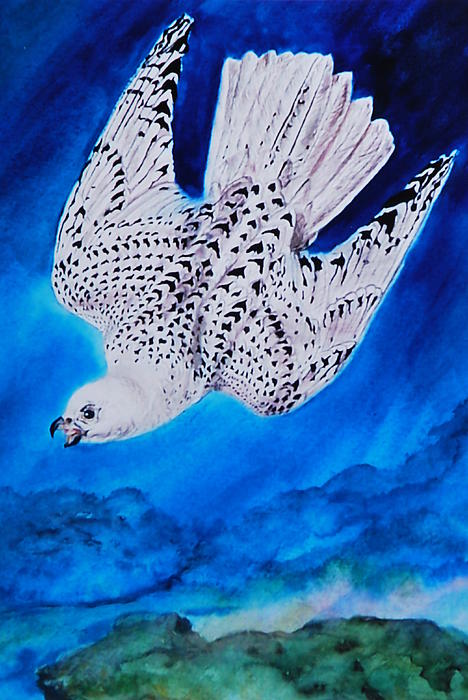White Falcon Mascot Print by Phyllis Barrett