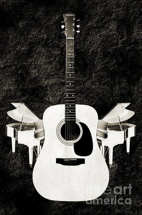 White Guitar Butterfly Photograph