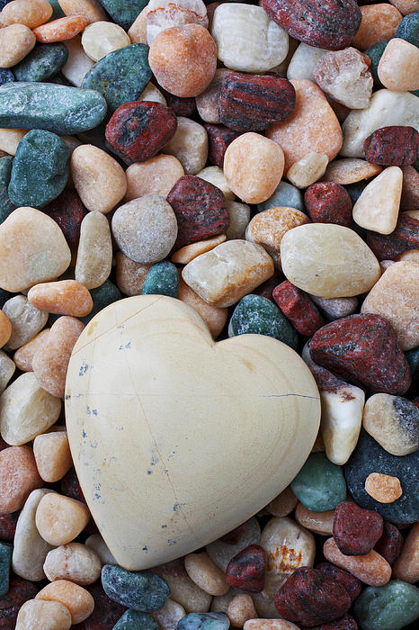 White Heart Stone Print by Garry Gay