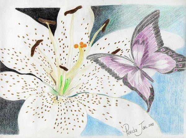 Cherryl Fernandez - White Lily and Purple Butterfly