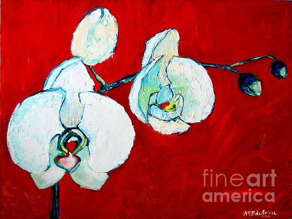 Ana Maria Edulescu - White Orchid