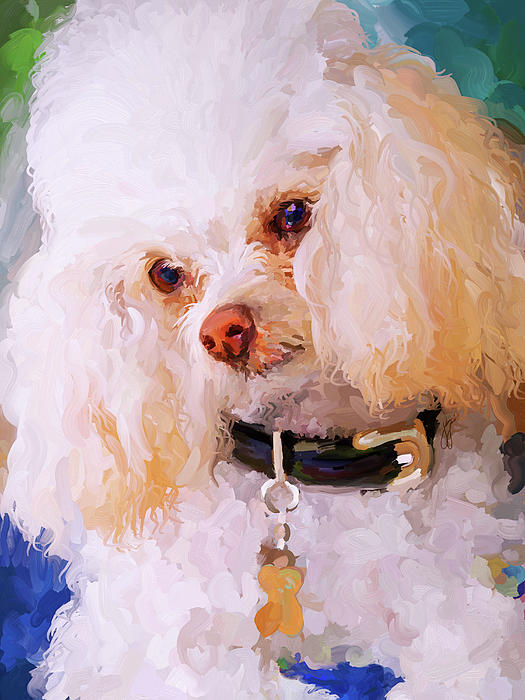 White Poodle Painting
