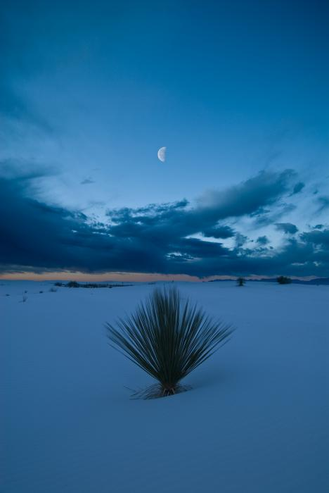 White Sands Moonrise Print by Steve Gadomski