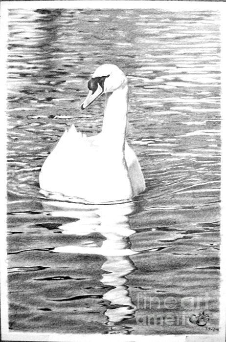 White Swan Print by Muna Abdurrahman