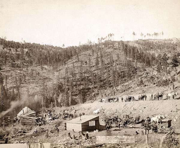 Whitewood Canyon, Wade And Jones R.r Print by Everett