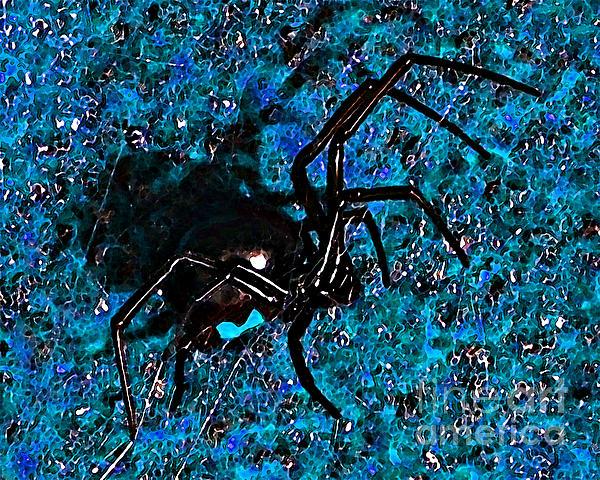 Wicked Widow - Blue Print by Al Powell Photography USA